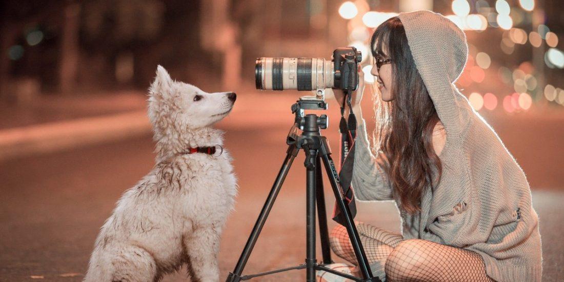 Urlaubsfotos mit Hund